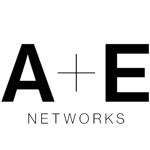 a+e networks logo_slider
